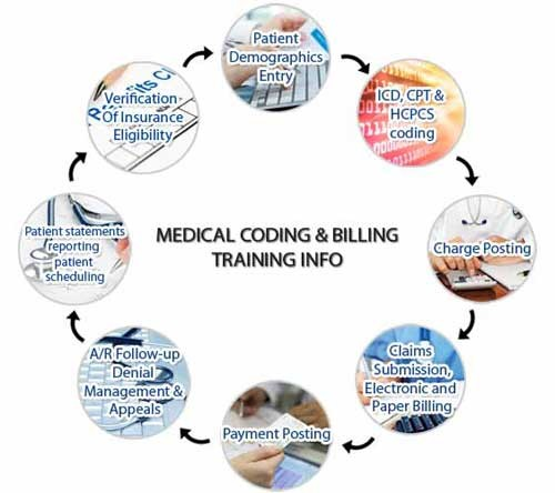 medical-coding-billing-Progress-chart
